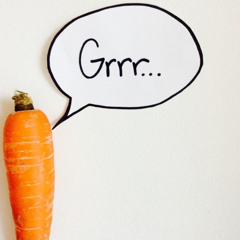 Top 10 Frustrations of a Vegetarian
