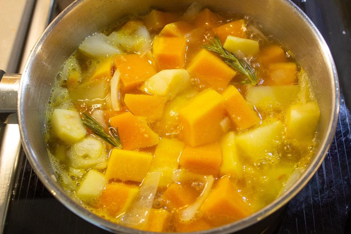 pot with squash, onions, potato, apple, broth