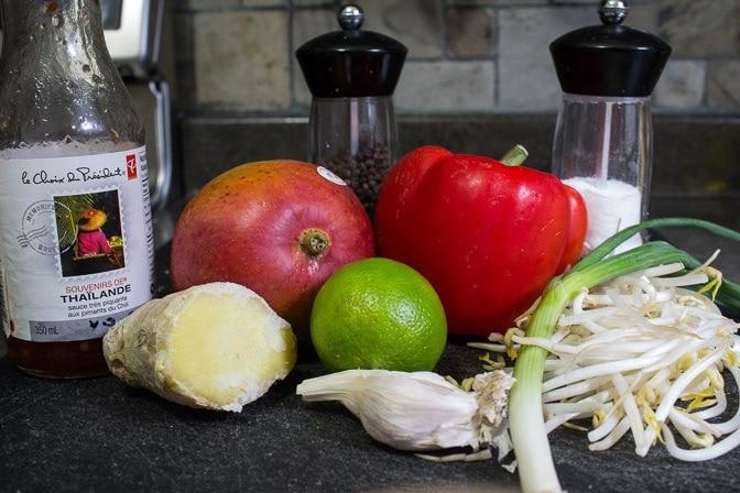 fresh mango salad ingredients