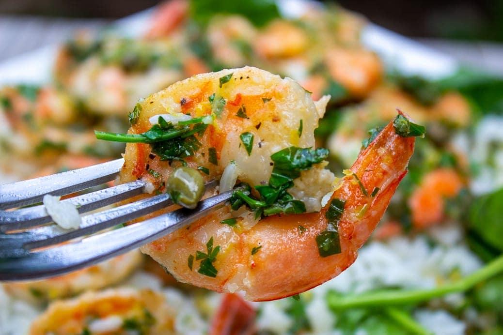single shrimp picatta on fork close up