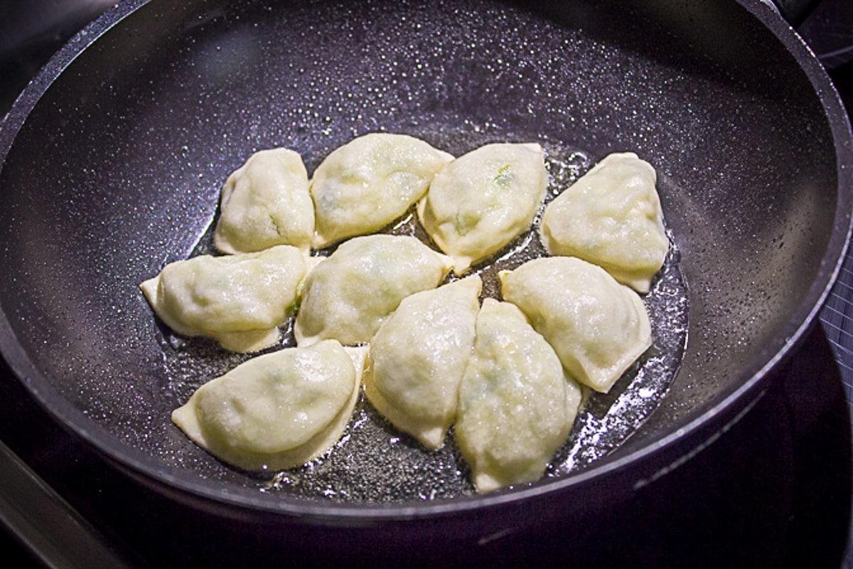 dumpling pan frying in pan