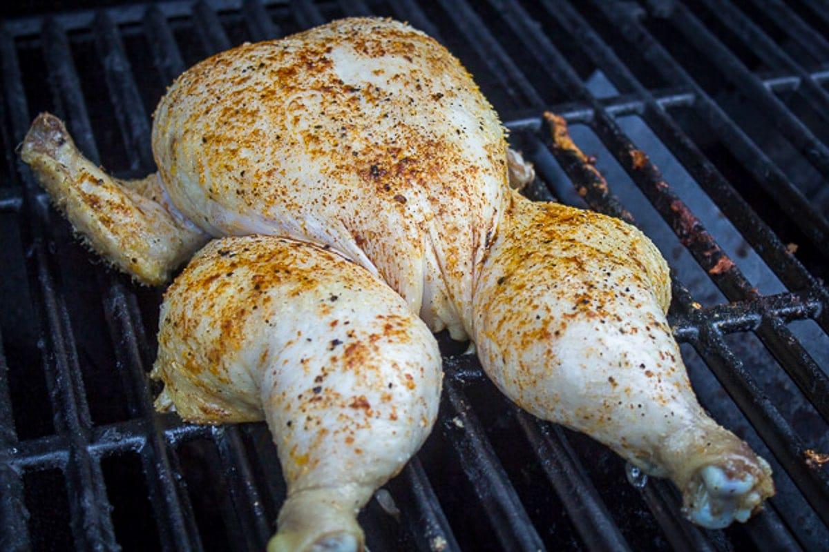 seasoned chicken on grill