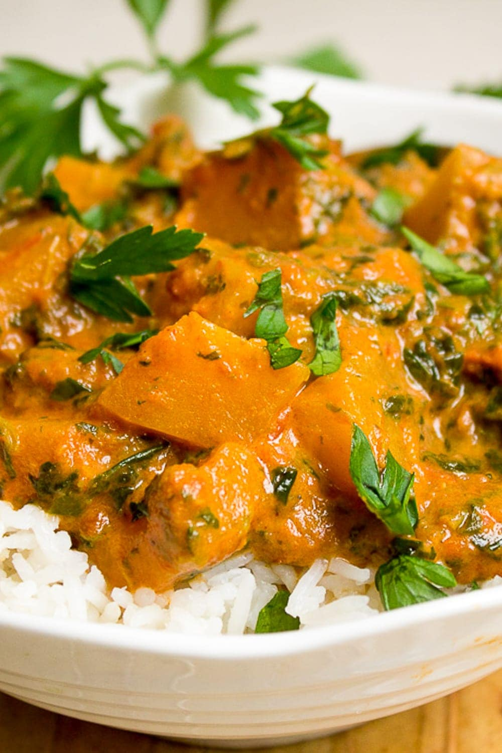 squash curry over rice in bowl p2