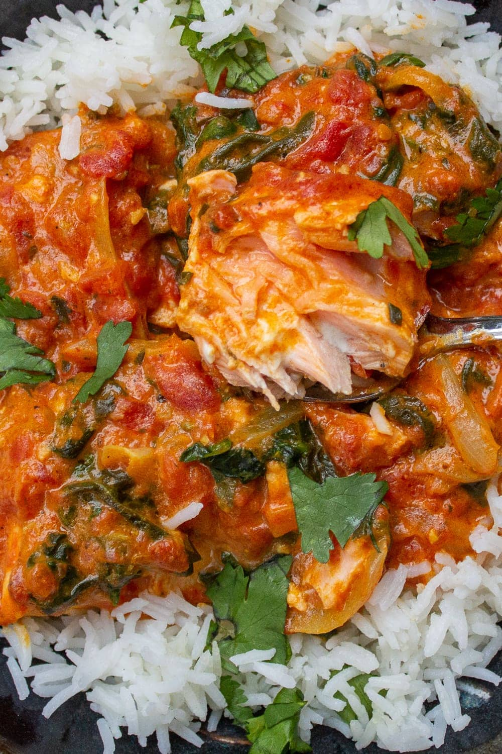 coconut curry salmon over rice in a bowl p