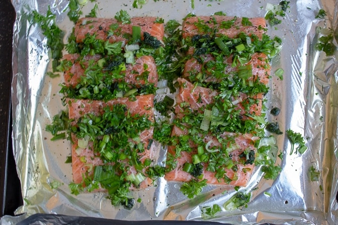 Salmon Stuffed With Herbs on pan with 1/4 cup wine surrounding it