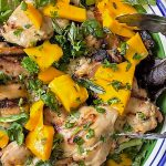 Thai-inspired marinated grilled chicken on bed of lettuce with fresh mango pieces p