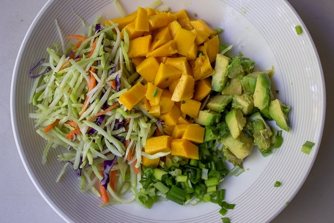 mango, green onion, avocado, slaw in bowl