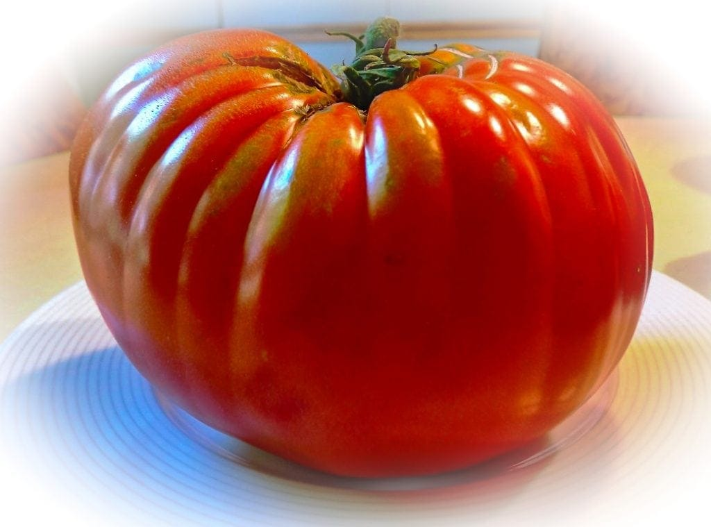 a large ripe tomato on a plate