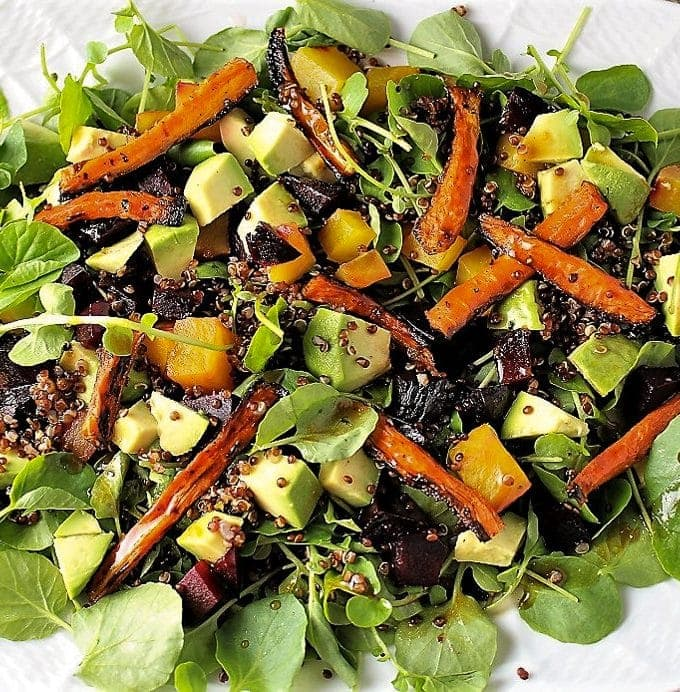 Red quinoa salad with roasted carrots and beets in shallow serving dish