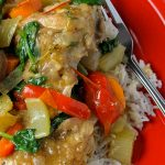 Chicken and Vegetables over rice on a red plate p