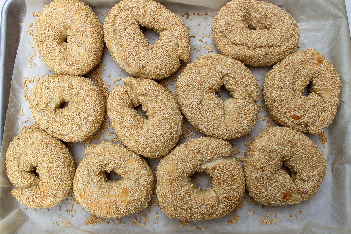 baked bagels on pan