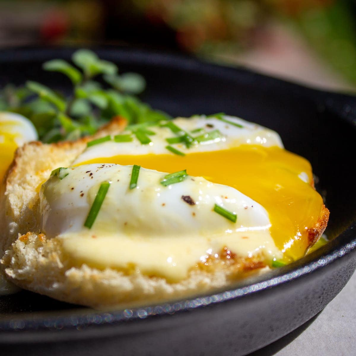 Sous Vide Poached Eggs (with easy hollandaise)